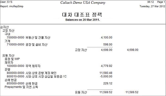 Example of Language Swap balance sheet in Korean