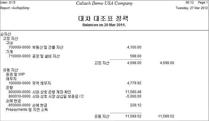Example of Language Swap balance sheet in Korean