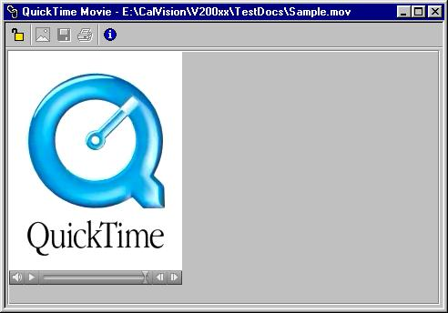 QuickTime Movie window