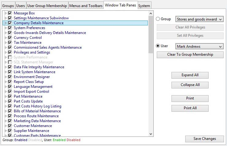 Privileges and Settings - Window Tab Panes pane